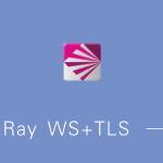 V2Ray WS+TLS 一键安装脚本 全自动安装nginx/搭建伪装网站/证书续期 Debian/CentOS/Ubuntu