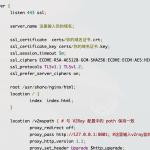 docker 部署 2ray 进阶篇 – 流量伪装 websocket+tls+web